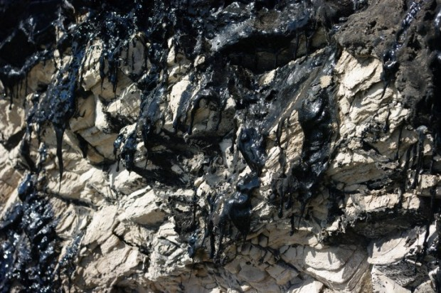 Tar oozing out of the bluffs.