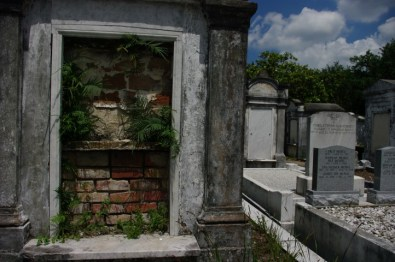 Life in the cemetery.