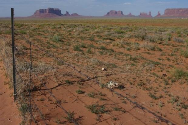 Monument Valley roadside.