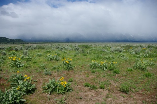 """Our first """"view"""" of the Tetons: day two."""