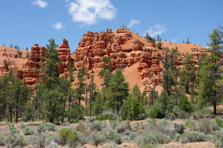 The view from our campsite at Red Canyon campground.