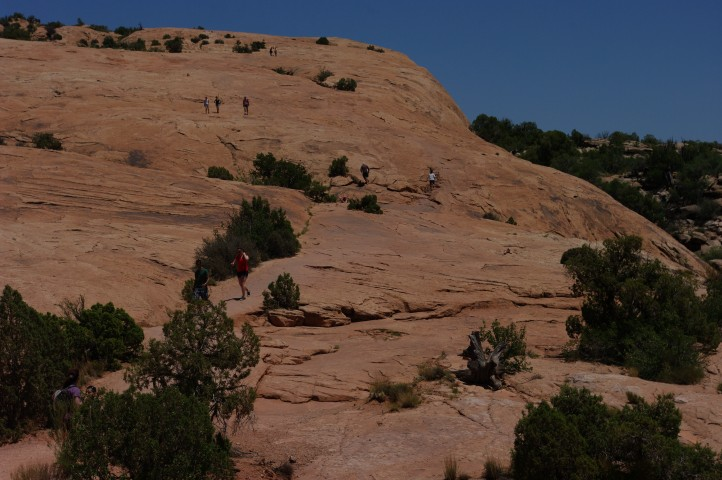 The trail to Delicate Arch -- just walk up that massive rocky hill, there.