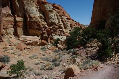 Cohab Canyon.