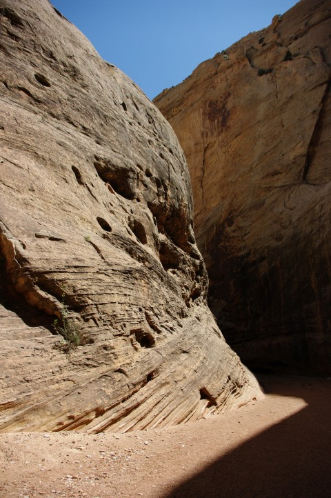 Sunlight in the narrows section of the wash.