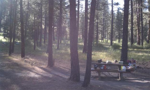 Post-dinner at the Pine Flats Campground.