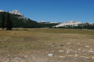Tuolumne Meadows, Yosemite NP. Lacking both wildflowers and hippies (there were riots here in 1970, which is difficult to imagine). [LM]