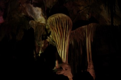 "There are lots of ""disk"" formations in this cave, which are unusual. This one is called The Parachute."