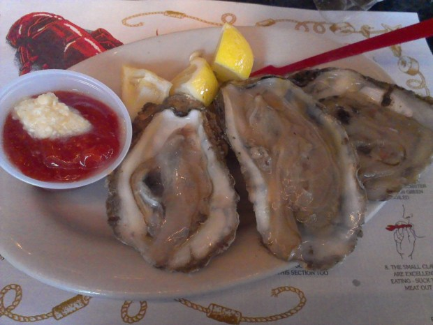 Oysters a J's Oysters, Portland, Maine.