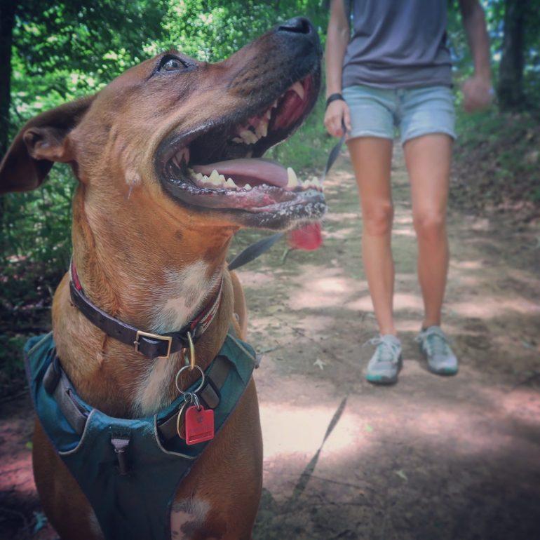 Hiking & Boondocking