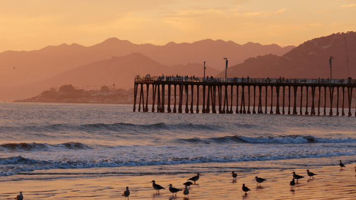 7 Easy Pismo Beach Camping Sites in 2019
