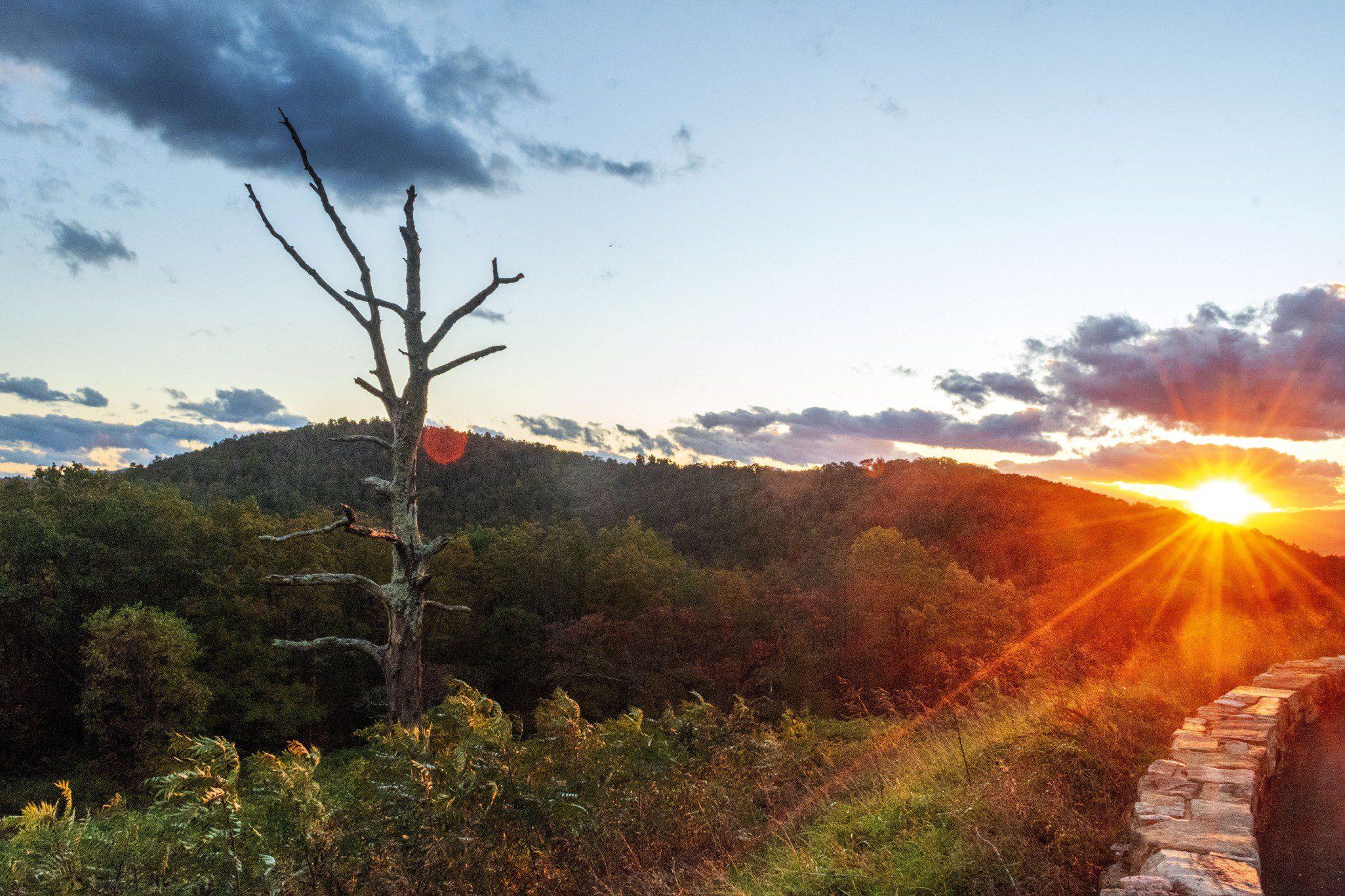 Shenandoah Camping