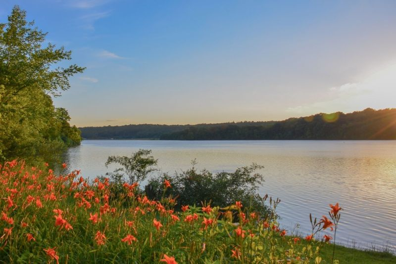 salt fork lake, lakes in ohio