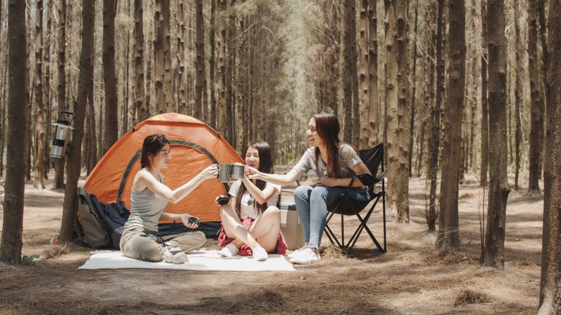 Three friends camping in trees.