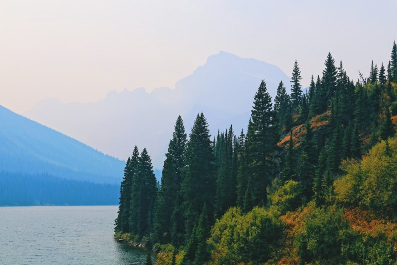 Glacier National Park scenic view.