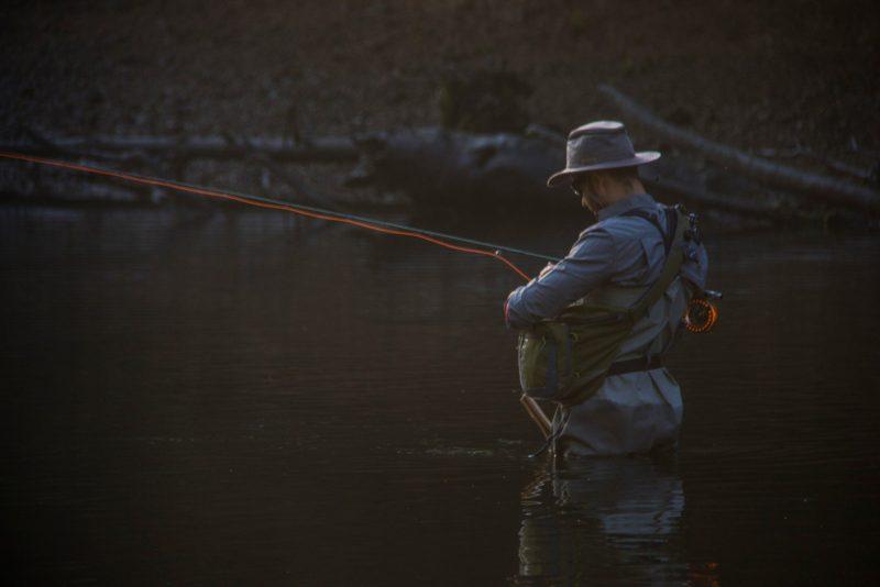 Alabama state parks, fishing and bird watching