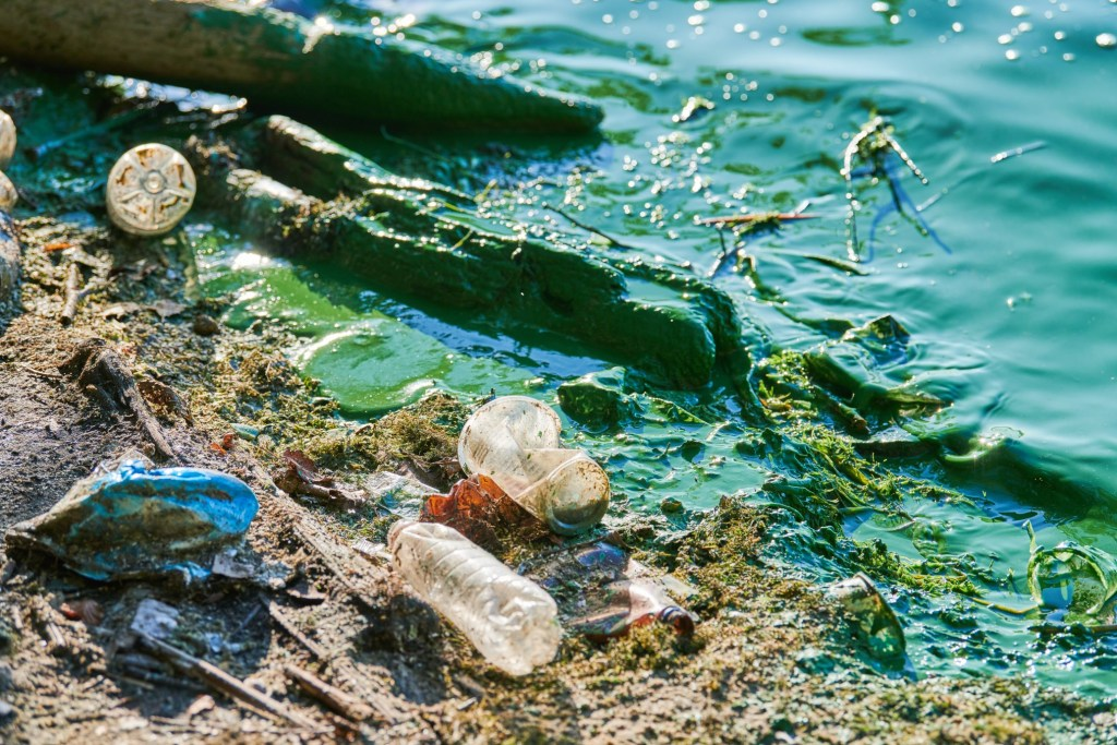 Toxic water with pollution.