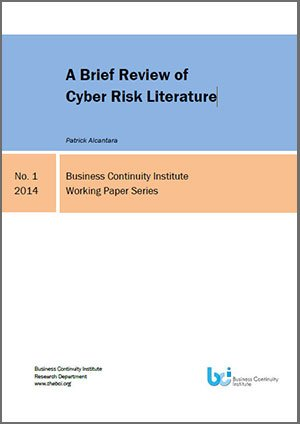 A Brief Review of Cyber Risk Literature