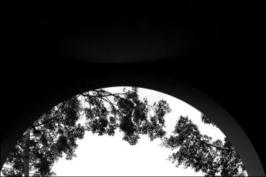 Black and white photograph of starkly silhouetted tunnel archway and tree branches against sky