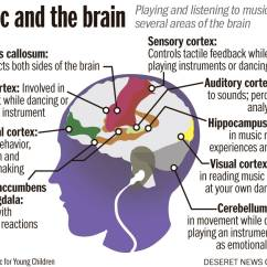 Advantages Of Cause And Effect Diagram Mobile Home Furnace Wiring Music The Brain Online Discussion 1  Dr Jones