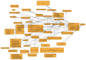 Help-Seeking Factors Mind Map (v1.1)