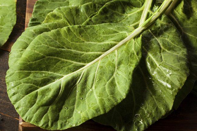 Alimentos que Dão Energia: Folhas Verdes. Imagem: (Divulgação)
