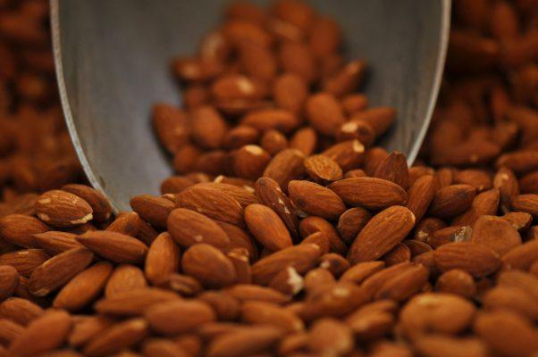 Propriedades-medicinais-da-amendoa-1-e1501867696262 Alimentos Para Aumentar a Testosterona