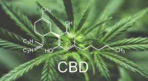 medicamentos-à-base-de-cannabiscbd-300x164 Cannabis e seus benefícios a saúde