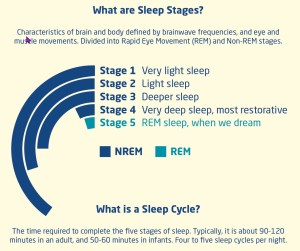 five stages of sleep that i very light sleep, l ight sleep, deeper sleep, very deep sleep, REM when we dreamncludes