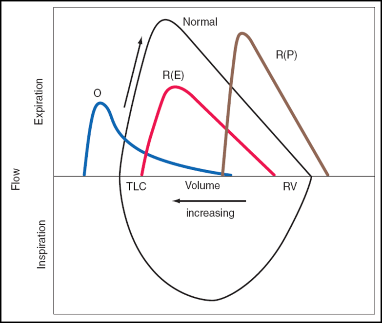 Lung Volumes « Review of Critical Care Medicine