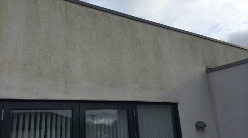 algefjerner fjerne alger fra mur eller fliser