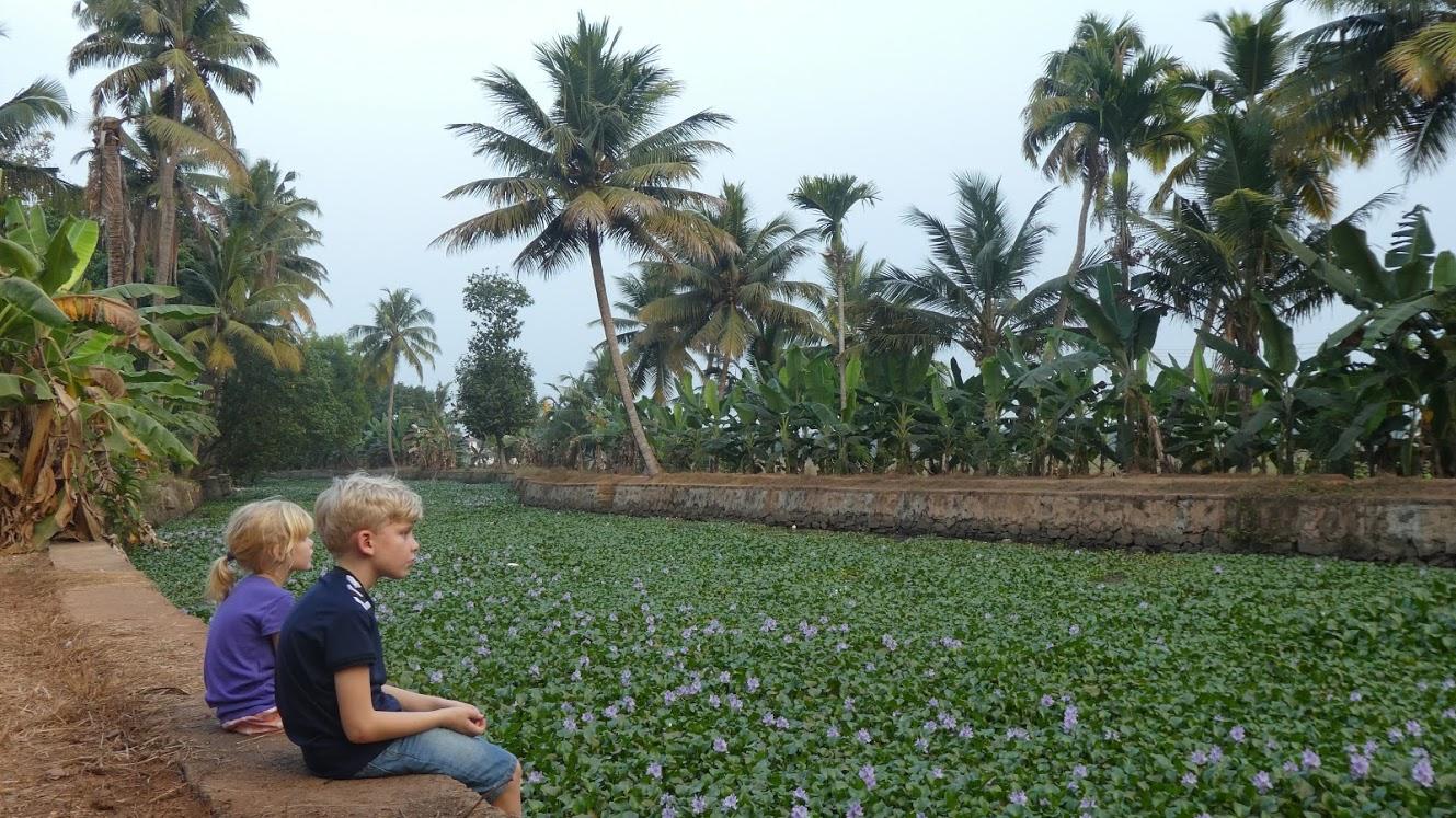 Vores børn ved en af de små kanaler i Backwaters Kerala