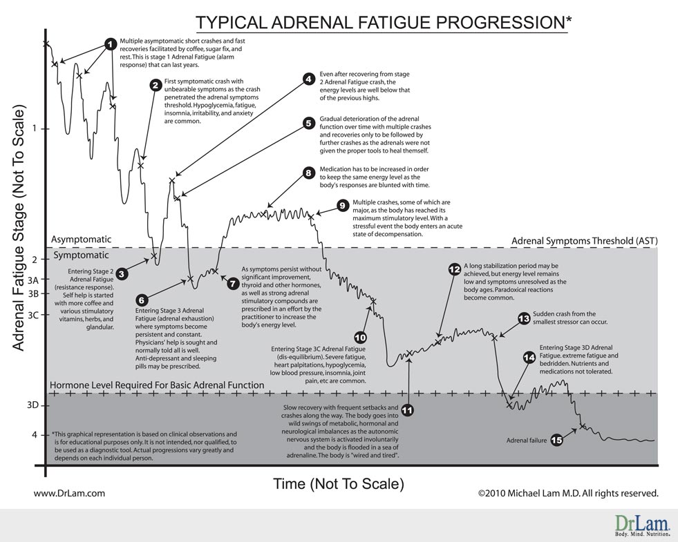 A chart showing the typical progression of Adrenal Fatigue