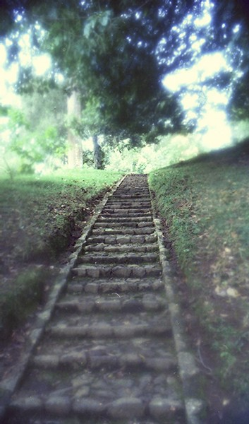 The journey continues--ever upward toward the light