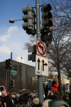 Guy on a Traffic Signal Pole