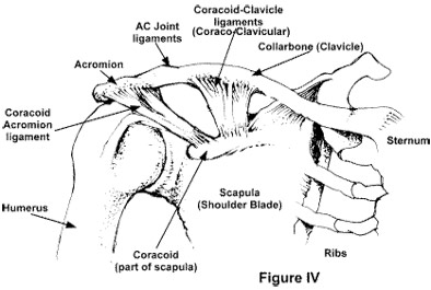 The Weight Lifter Problem! AC Joint Separations