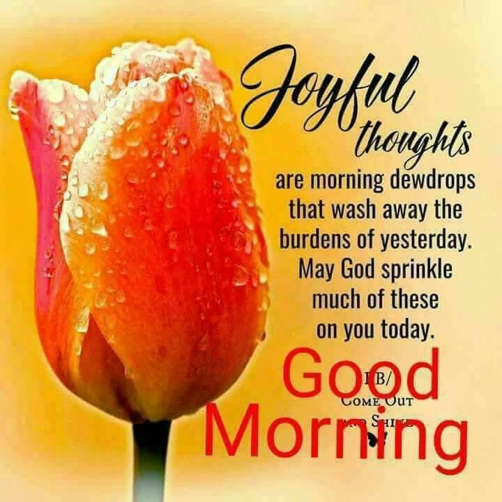 joyful thoughts are morning