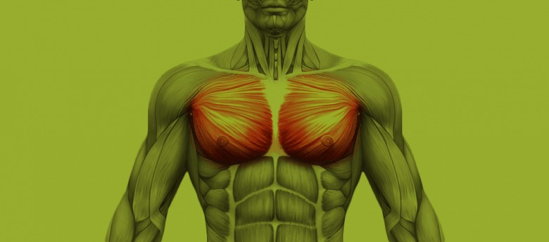 rotura do músculo peitoral