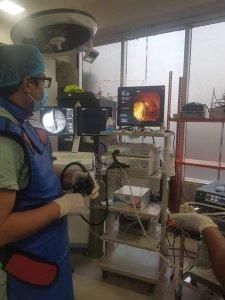 ERCP  ইআরসিপি এর মাধ্যমে পিত্তনালী এর পাথর অপসারণ করে জন্ডিস এর চিকিৎসা পদ্ধতি। ডাঃ মাশফিক আহমেদ ভূঞাঁ