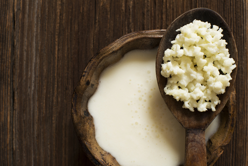 5 Most Important Ingredients When Choosing YourProbiotic