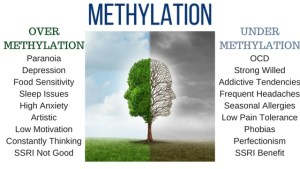 METHYLATION: OVER OR UNDER