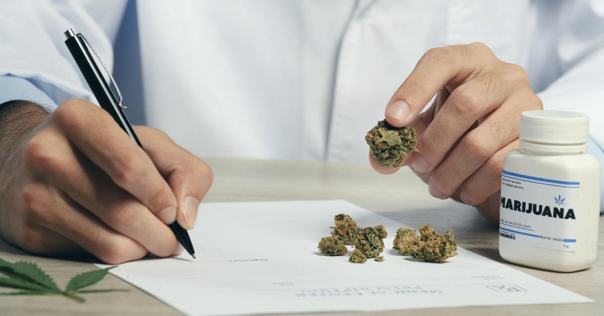 marijuana doctor prescribing cannabis for gut issues