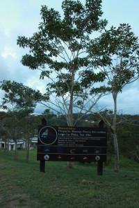 Refugio de Vida Silvestre Embalse La Plata, Toa Alta