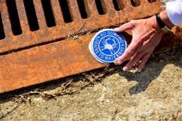 storm-drain-stenciling-g