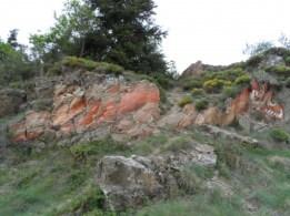 Dragon - Cantal