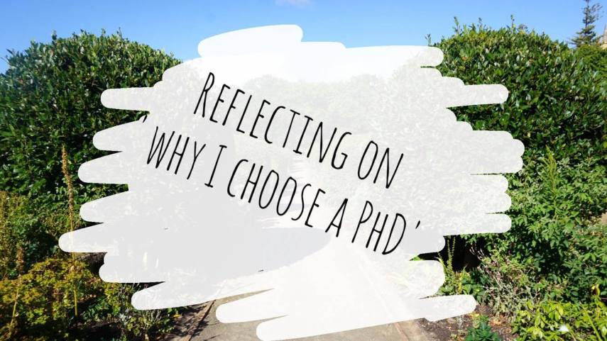 why i choose phd