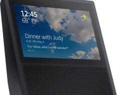 Amazon Echo Leaks