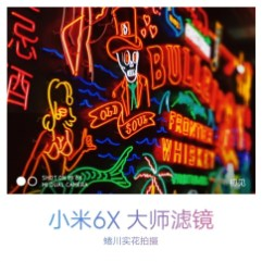 Xiaomi Mi 6X rear camera sample 5