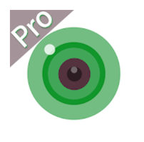 iCSee Pro for PC