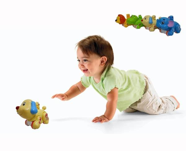 Animal toy for kids