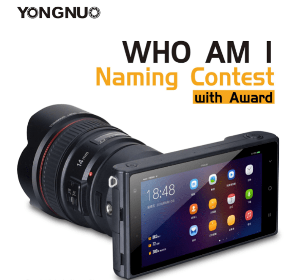 YN450 Mirrorless Camera